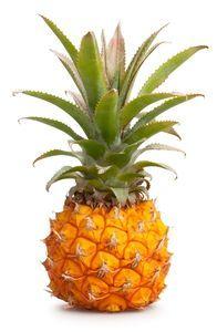 Ananas baby