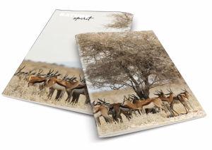 Zvezek A4 črte divje živali