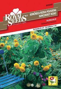 Seme Royal, Sončnica nizka, 99