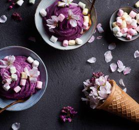 Jasminov sladoled z borovnicami