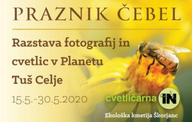 Praznik čebel – razstava fotografij in cvetlic
